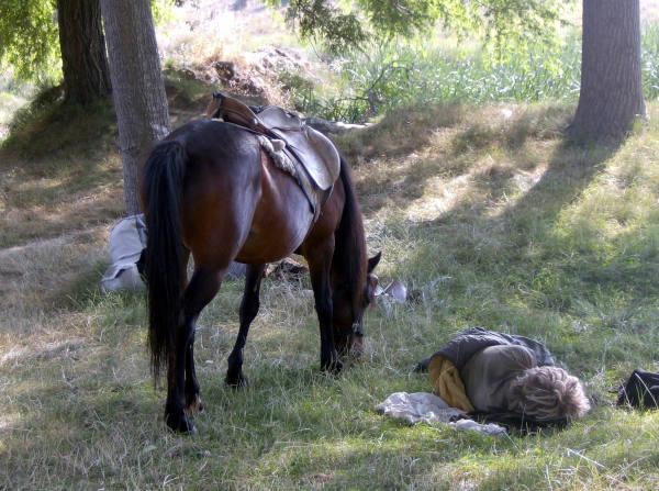 Ein Schlafender liegt auf der Wiese. Sein Pferd grast direkt neben ihm.