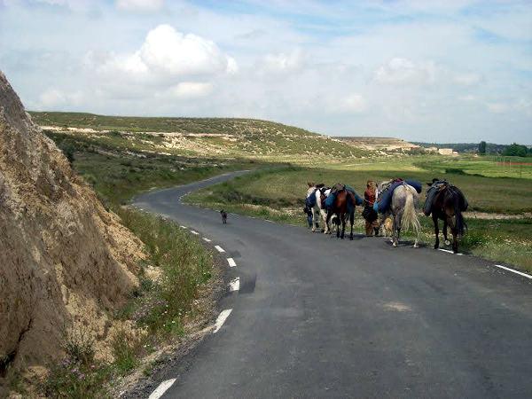 Pferdereise in spanien