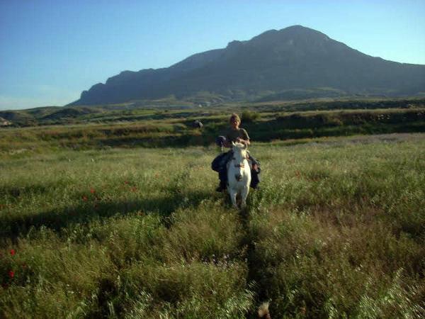 Eine weite grüne Wiese auf dem jemand auf einem Pferd reitet. Das Pferd trägt Gepäck für eine lange Reise.